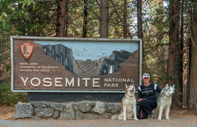 Dawn_and_huskies_Yosemite