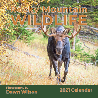 Rocky Mountain Wildlife 2021 Calendar Cover