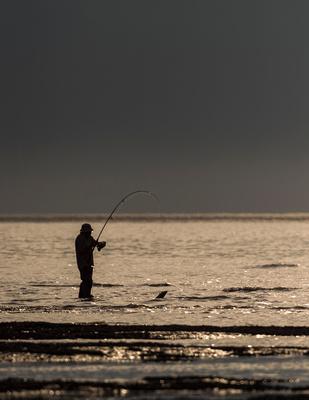 Fisherman_Valdez_2016_1