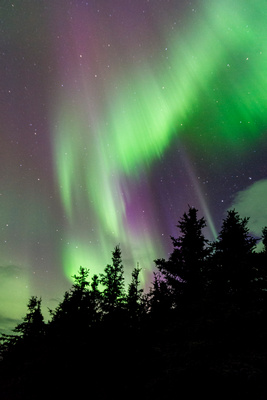 Northern_Lights_Denali_2017_1